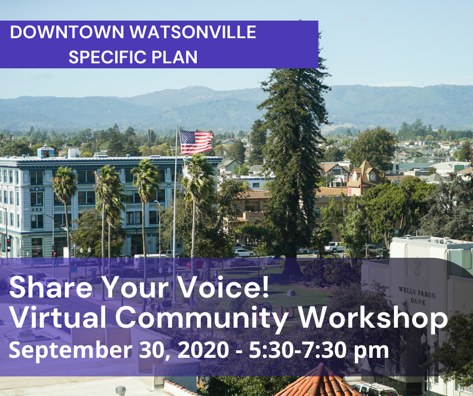 Virtual Community Workshop