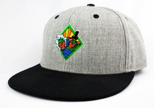 Strawberry Festival logo gray hat