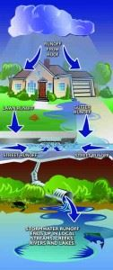 Illustration showing the stormwater cycle from cloud to water source