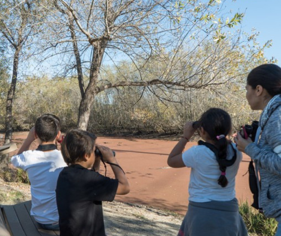 Kids looking through binoculars at the Wetlands